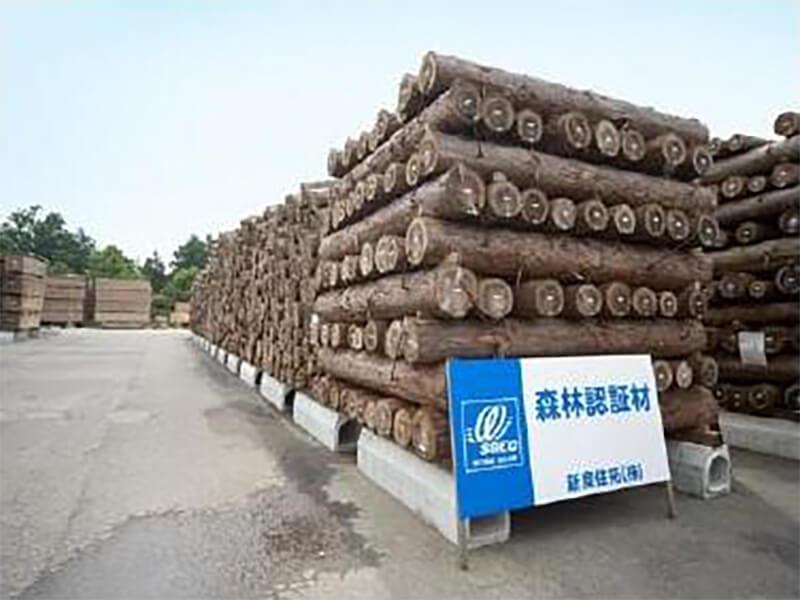 wood-天然乾燥