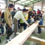 wood-天然乾燥木材ギャラリー07